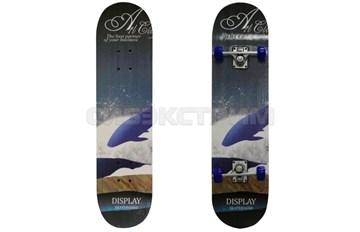 Скейтборд BlackAqua SK-3108 Print 6