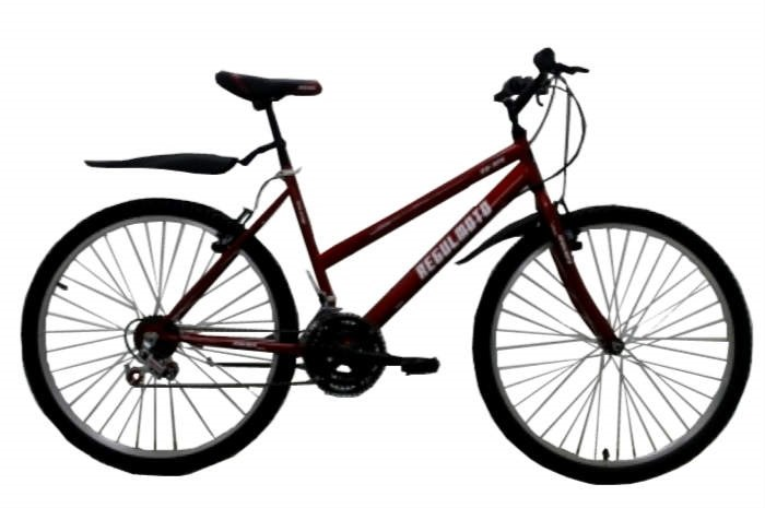 Велосипед Regulmoto 26-314 красный