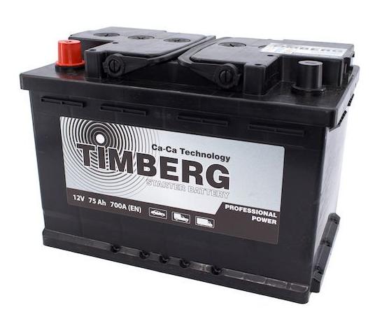 Аккумулятор Timberg Professional Power 75Ah L 700А