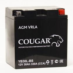 Мото аккумулятор Cougar AGM VRLA YB30L-BS