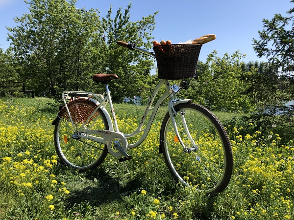 """Велосипед AIST Tango 28"""" 2.0"""