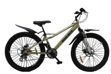 Велосипед Regulmoto 24-111