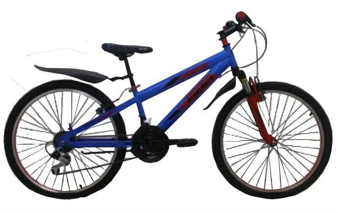 Велосипед Regulmoto 24-201