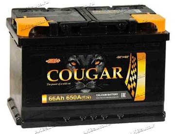Автомобильный аккумулятор Cougar 66 Euro (обратная полярность)