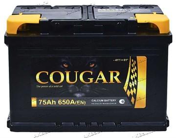 Автомобильный аккумулятор Cougar 75 Euro (обратная полярность)
