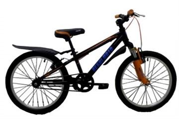 Велосипед Regulmoto 20-102
